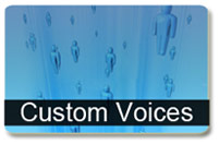 Custom Voices